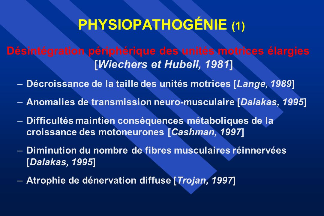 PHYSIOPATHOGÉNIE (1) Désintégration périphérique des unités motrices élargies [Wiechers et Hubell, 1981]